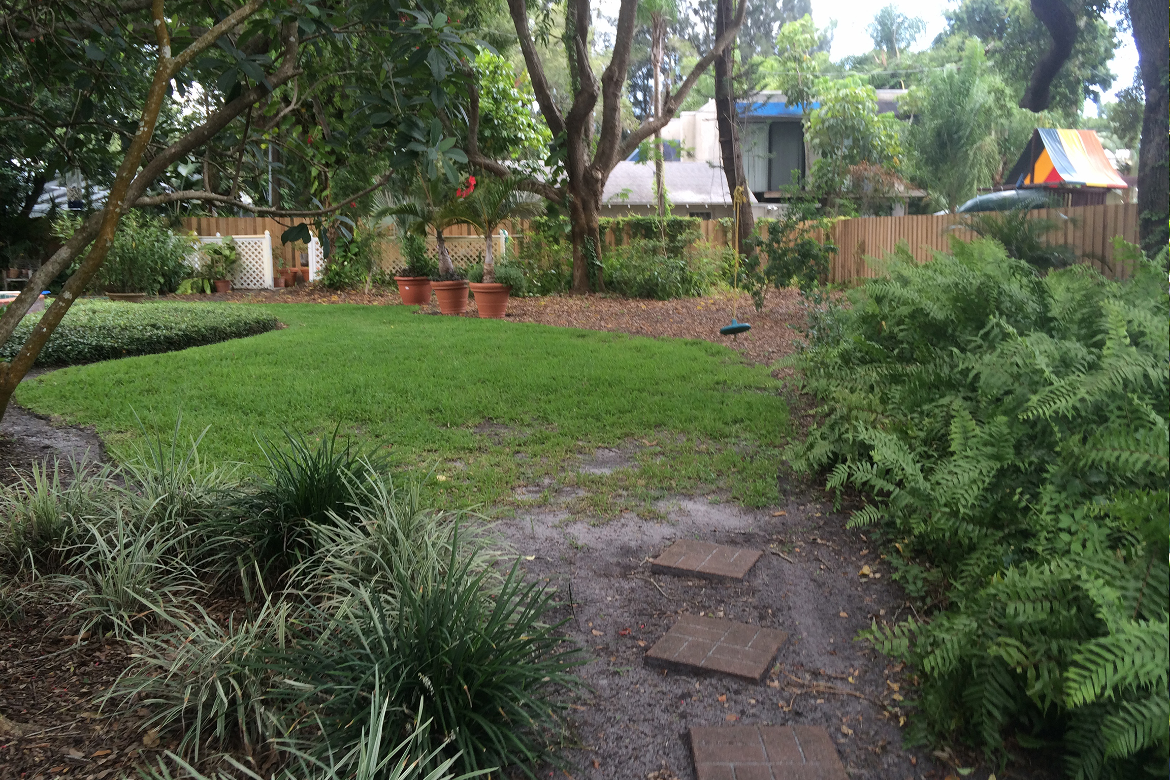 before perennial garden